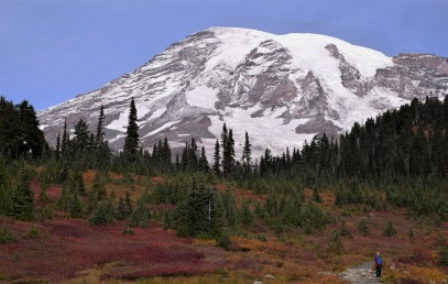 065Copyright 2018 Rolf C. Margenau-Mt. Ranier NP- Fall Colors