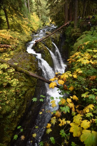 Copyright 2018 Rolf C. Margenau- Olympic NP-Sol Duc Waterfall & trail035